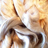 Silk and Exotic Fibres