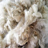 Wensleydale Fleece